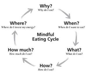 eating-cycle-infographic